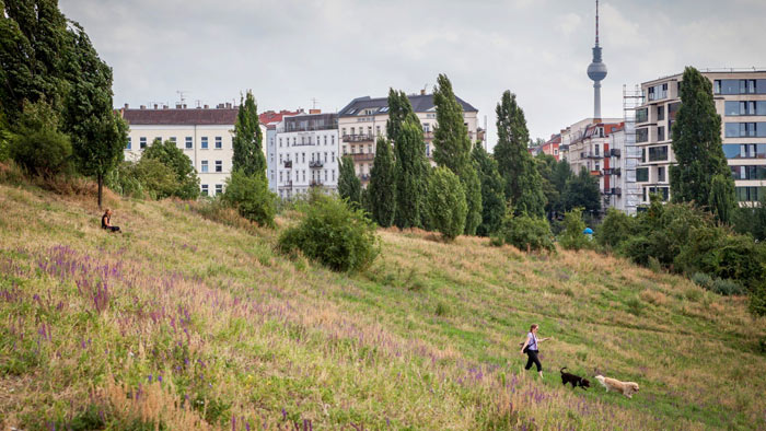 שטח פנוי: אפשר להקים 50 אלף דירות על גגות בניינים בברלין