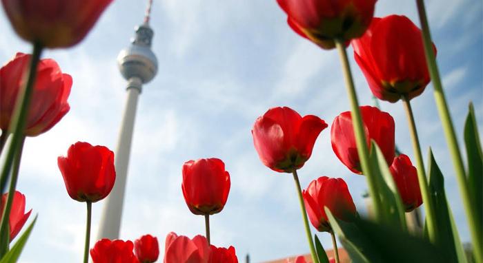 """חוקי הנדל""""ן בברלין מגינים על המחירים - ומיטיבים עם המשקיעים"""